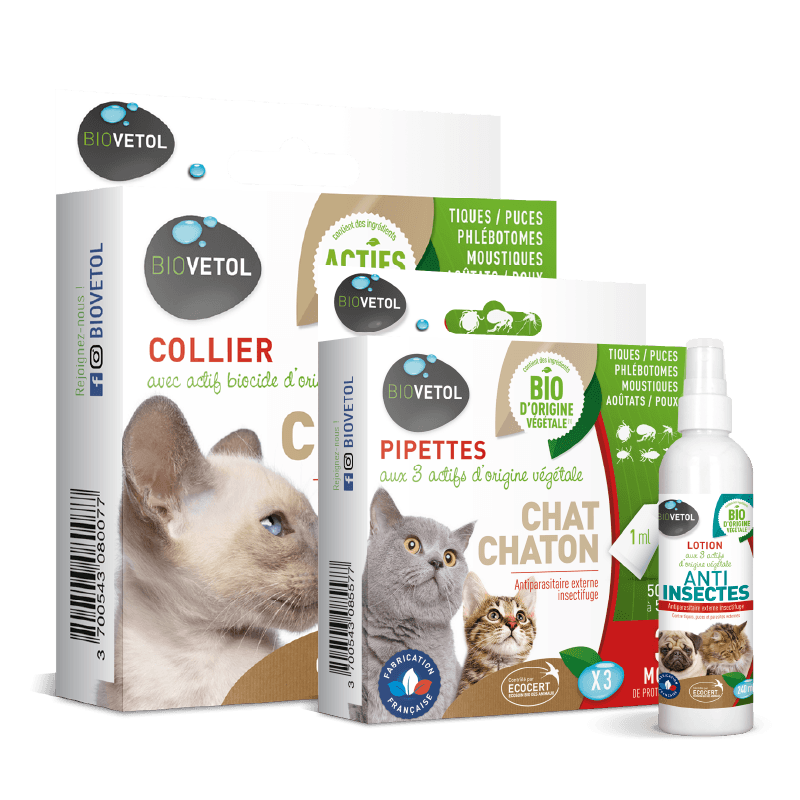 pack antiparasitaire chat 8